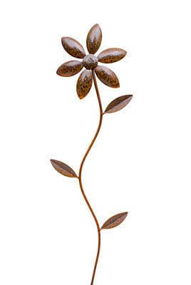 Daisy Garden Stake