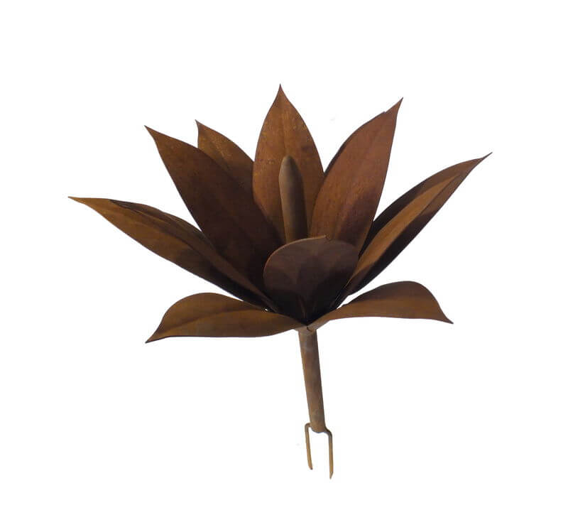 Foxtail Agave Sculpture Small