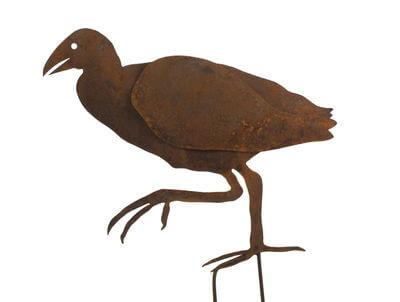 Swamp Hen 1