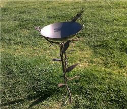Birdbath with Dragonfly and Large Leaves