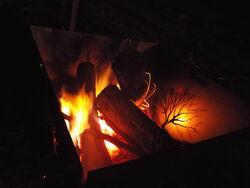 Celtic Fire Pit Portable Garden Art
