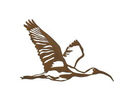 Flying Ibis Large Metal Wall Art
