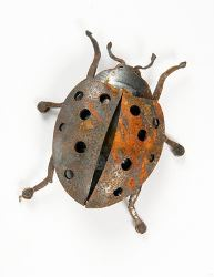 Magnetic creatures by Overwrought-Ladybird Beatle