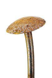 Mushroom Stake
